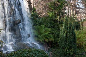 Iveagh_Gardens,_Dublin_-_infomatique