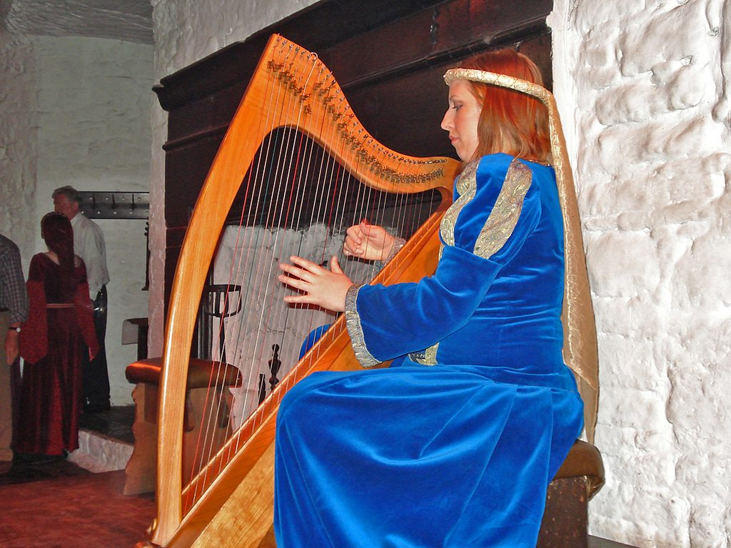 Photo of Musician at Bunratty Castle Banquet