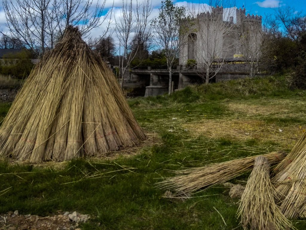 Photo of Bunratty Castle and Folk Park