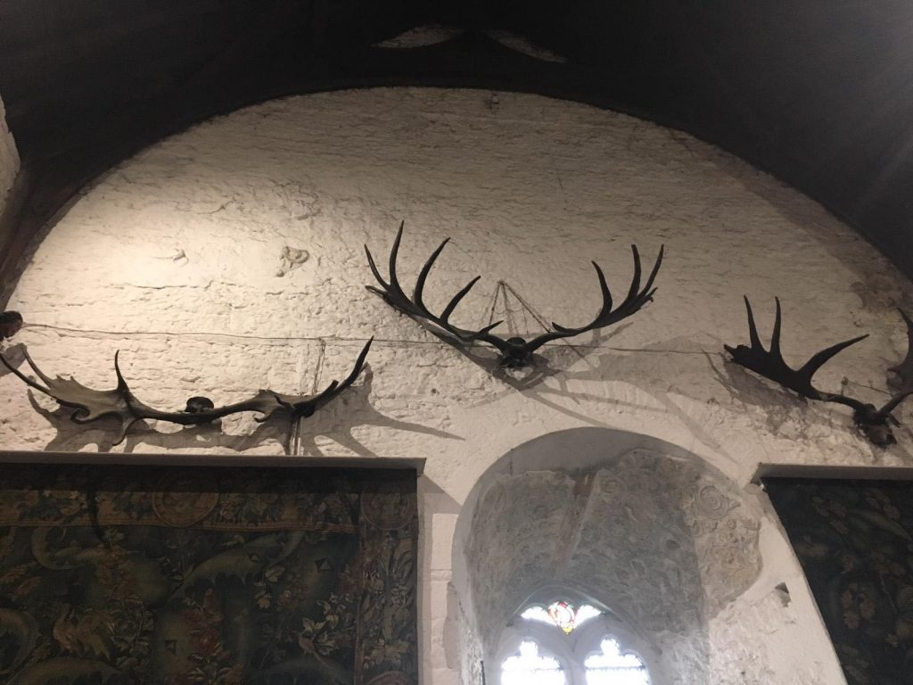 Photo of Antlers