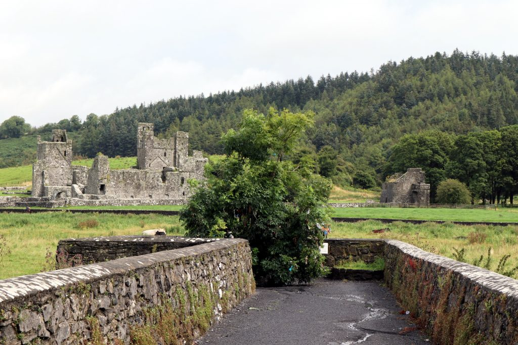 Photo of Fore Abbey